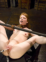 Sexy shaved red head get the bondage of her life on Hogtied.