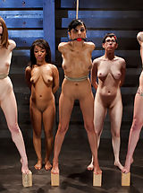 Severe Bondage, Exhausting Exercise, and intimidating Orgasms Expose the fragile during this education procedure to demonstrate which slave will move on.