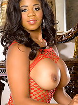 Eden Evans in Ebony Babe with Huge Tits in Breastless Fishnet
